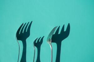 diet forks